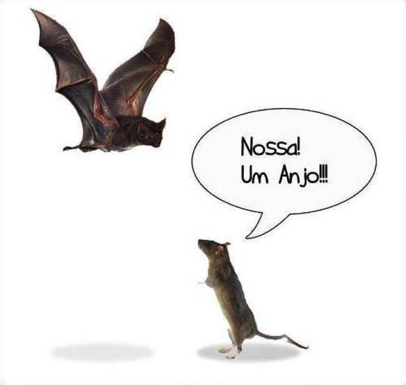 Bat-Anjo