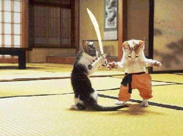 Gatos Protagonizando Meowtrix
