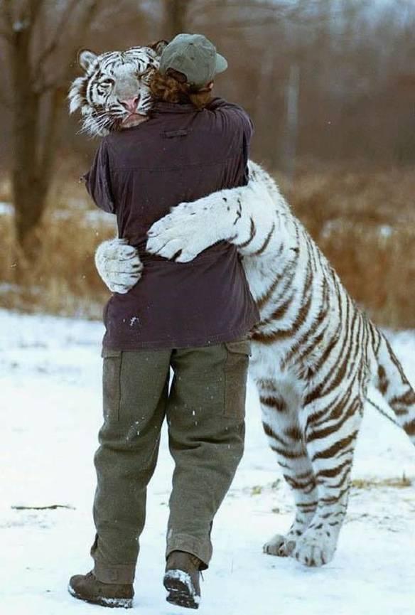 Grande Abraço