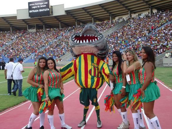 Melhor Mascote do Futebol Brasileiro
