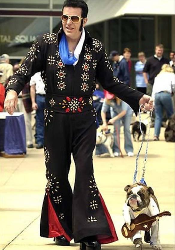 Elvis e seu Companheiro